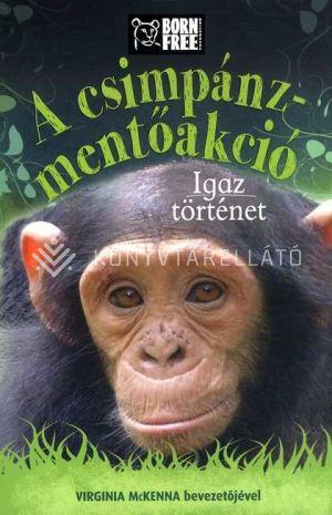 Kép: A csimpánz-mentőakció - Igaz történet