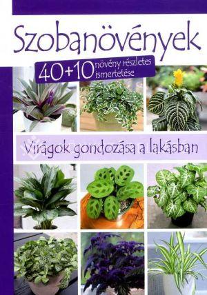 Kép: Szobanövények - 40+10 növény részletes ismertetése