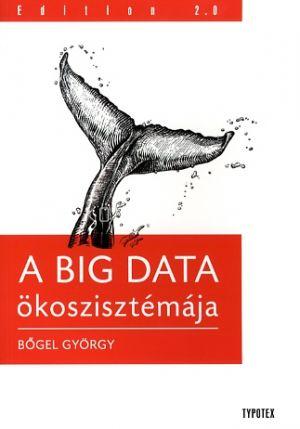 Kép: A BIG DATA ökoszisztémája