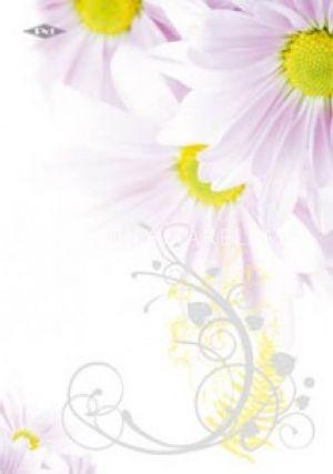 Kép: Spirálfüzet pd A/4 60 lap vonalas virágok I.